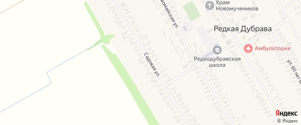 Садовая улица на карте села Редкой Дубравы с номерами домов