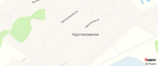 Школьная улица на карте Круглоозерного села Новосибирской области с номерами домов