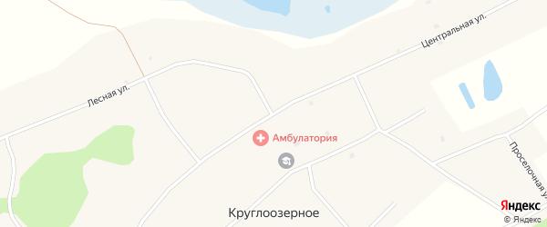 Центральная улица на карте Круглоозерного села Новосибирской области с номерами домов