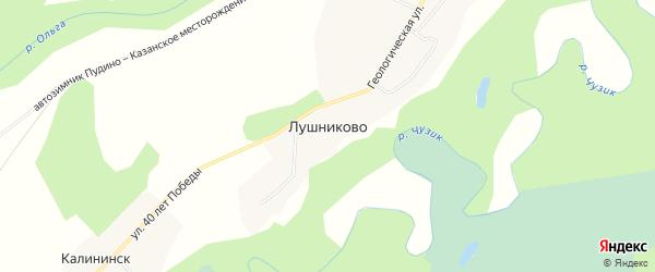 Карта поселка Лушниково города Кедрового в Томской области с улицами и номерами домов
