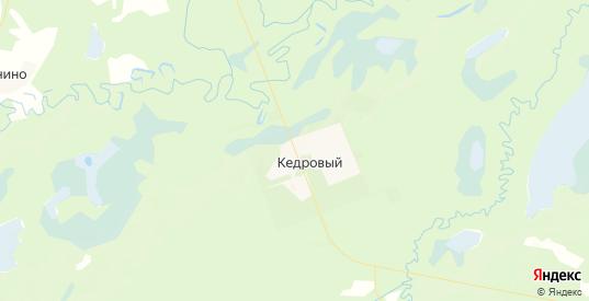 Карта Кедрового с улицами и домами подробная. Показать со спутника номера домов онлайн