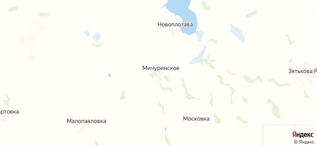 Мичуринское на карте