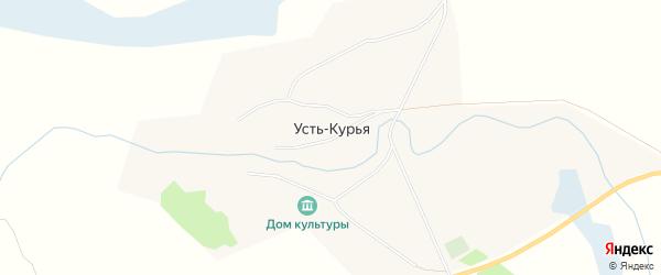 Карта поселка Усть-Курьи в Алтайском крае с улицами и номерами домов