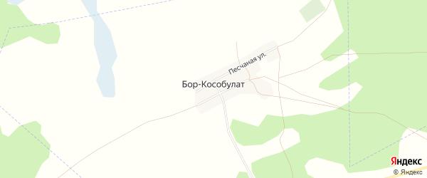 Карта села Бора-Кособулата в Алтайском крае с улицами и номерами домов