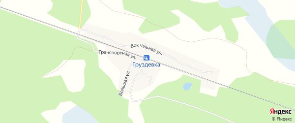 Карта деревни Груздевки в Новосибирской области с улицами и номерами домов