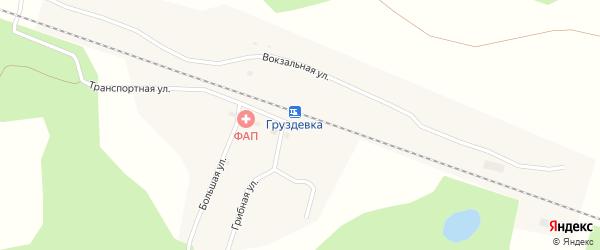 Грибная улица на карте деревни Груздевки Новосибирской области с номерами домов