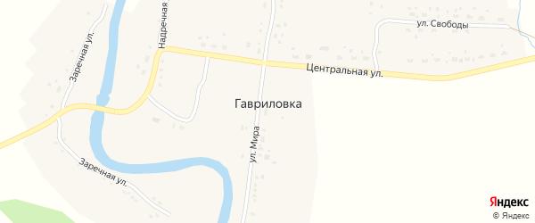 Речной переулок на карте поселка Гавриловки Новосибирской области с номерами домов