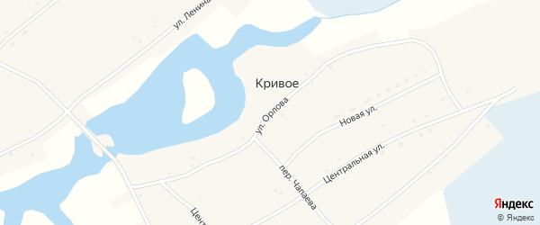 Улица Орлова на карте Кривого села с номерами домов