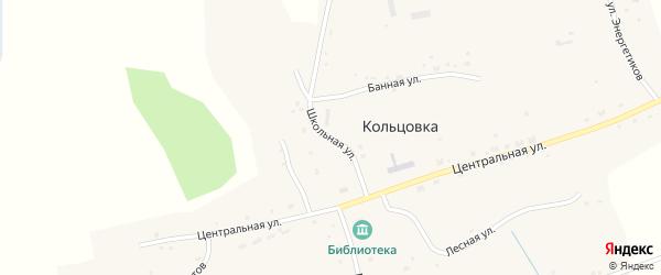 Школьная улица на карте села Кольцовки Новосибирской области с номерами домов