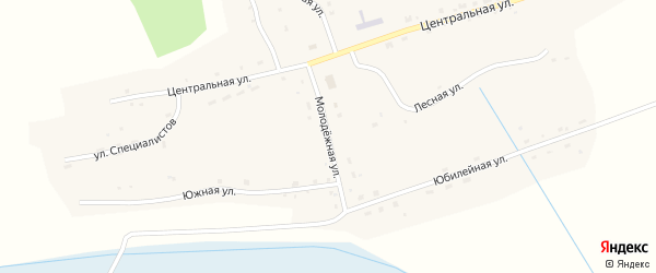 Молодежная улица на карте села Кольцовки Новосибирской области с номерами домов