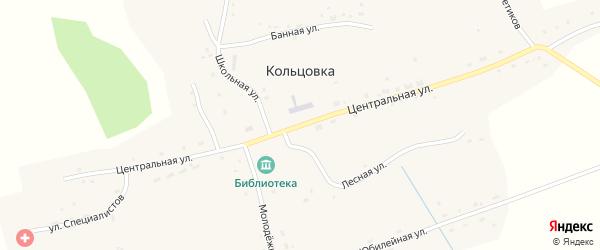 Центральная улица на карте села Кольцовки Новосибирской области с номерами домов