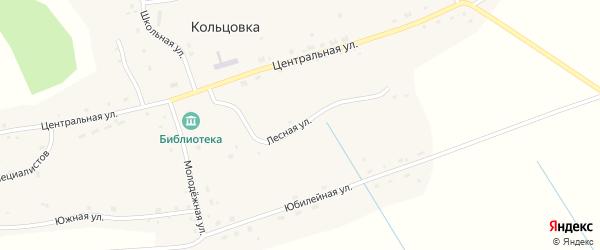 Лесная улица на карте села Кольцовки Новосибирской области с номерами домов