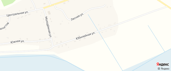 Юбилейная улица на карте села Кольцовки Новосибирской области с номерами домов
