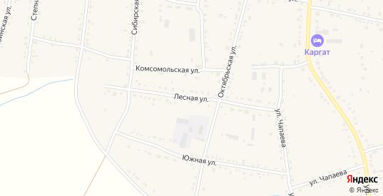 Лесная улица в Каргате с номерами домов на карте. Спутник и схема онлайн