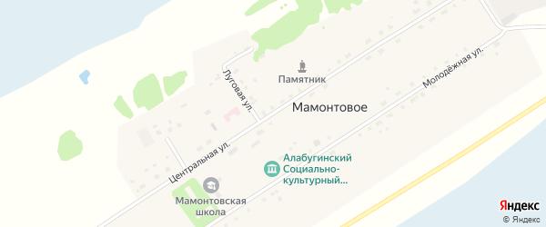 Центральная улица на карте Мамонтового села Новосибирской области с номерами домов