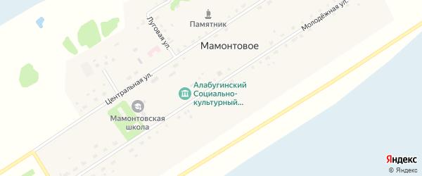 Молодежная улица на карте Мамонтового села Новосибирской области с номерами домов