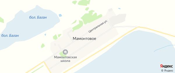 Карта Мамонтового села в Новосибирской области с улицами и номерами домов