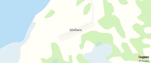 Карта поселка Шибак в Новосибирской области с улицами и номерами домов