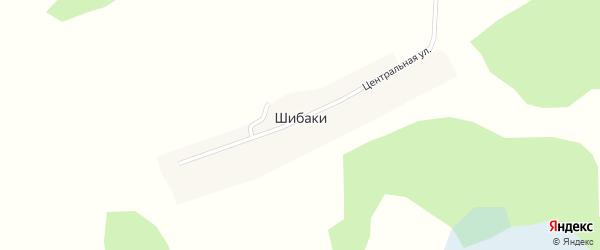 Пионерская улица на карте поселка Шибак Новосибирской области с номерами домов