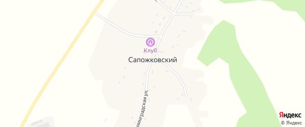 Новая улица на карте Сапожковского поселка Новосибирской области с номерами домов
