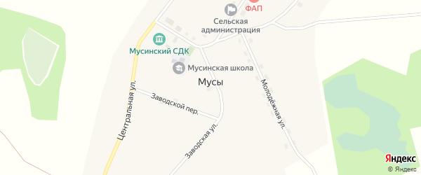 Центральная улица на карте села Мусы Новосибирской области с номерами домов