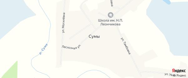 Карта села Сум в Новосибирской области с улицами и номерами домов