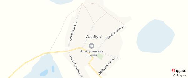 Карта деревни Алабуги в Новосибирской области с улицами и номерами домов
