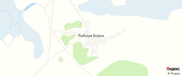 Карта поселка Рыбные Борки в Алтайском крае с улицами и номерами домов