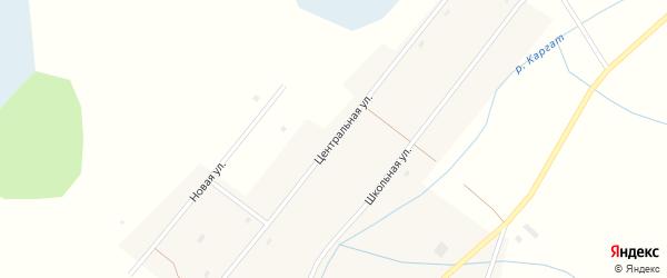Центральная улица на карте села Верха-Каргата Новосибирской области с номерами домов
