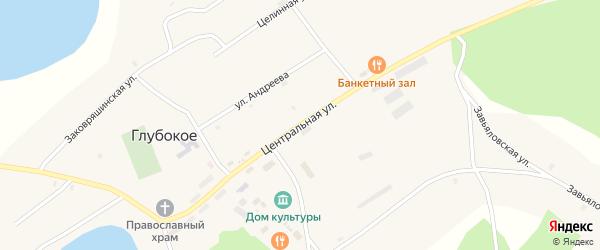 Центральная улица на карте Глубокого села Алтайского края с номерами домов