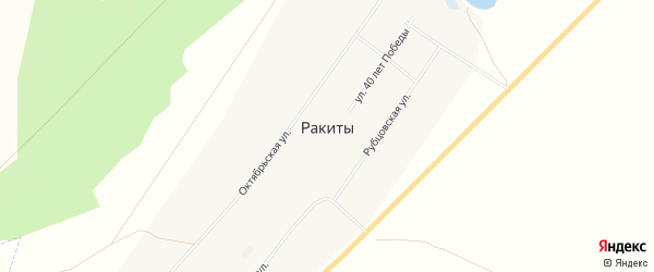 Карта села Ракиты в Алтайском крае с улицами и номерами домов