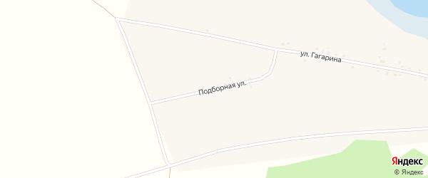 Подборная улица на карте Волчна-Бурлинского села Алтайского края с номерами домов