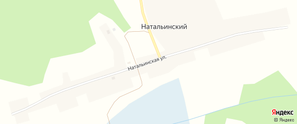 Натальинская улица на карте Натальинского поселка Новосибирской области с номерами домов