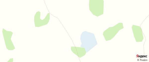 Карта Светлого села в Алтайском крае с улицами и номерами домов