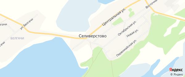 Карта села Селиверстово в Алтайском крае с улицами и номерами домов