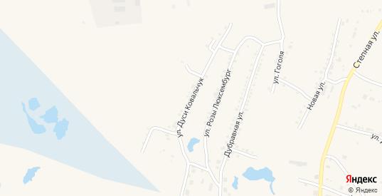Улица Дуси Ковальчук в Чулыме с номерами домов на карте. Спутник и схема онлайн