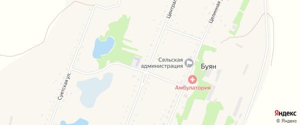 Центральная улица на карте села Буяна Алтайского края с номерами домов