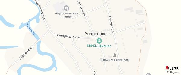 Центральная улица на карте села Андроново с номерами домов