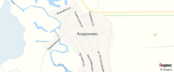 Карта села Андроново в Алтайском крае с улицами и номерами домов