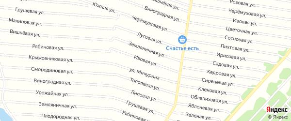 Ивовая улица на карте садового некоммерческого товарищества N 7 с номерами домов