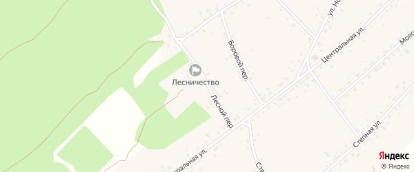 Лесной переулок на карте села Гонохово Алтайского края с номерами домов