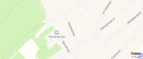 Боровой переулок на карте села Гонохово Алтайского края с номерами домов