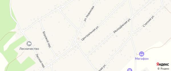 Центральная улица на карте села Гонохово Алтайского края с номерами домов