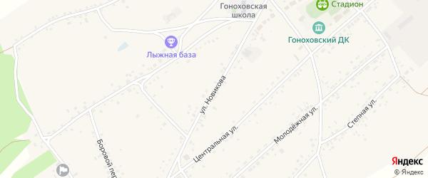 Улица Новикова на карте села Гонохово Алтайского края с номерами домов