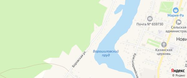 Боровская улица на карте села Новичихи Алтайского края с номерами домов