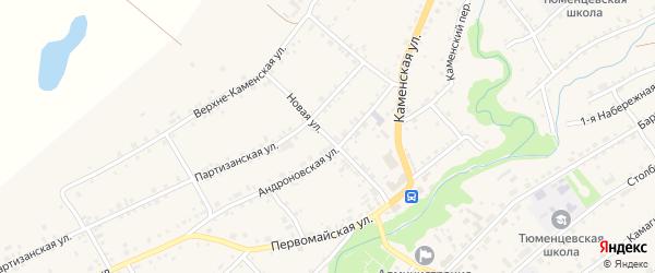 Новая улица на карте села Тюменцево с номерами домов