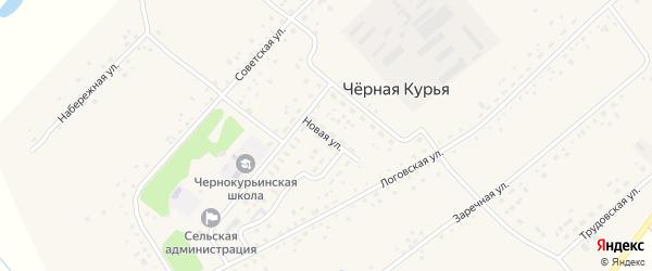 Новая улица на карте села Черной Курьи с номерами домов
