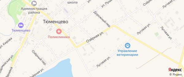 Озёрная улица на карте села Тюменцево с номерами домов