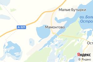 Карта с. Мамонтово Алтайский край