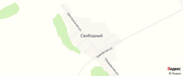 Карта Свободного поселка в Алтайском крае с улицами и номерами домов